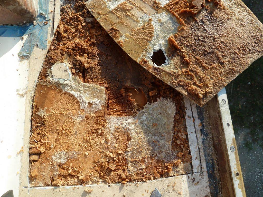 Wood Floor Repair Holes